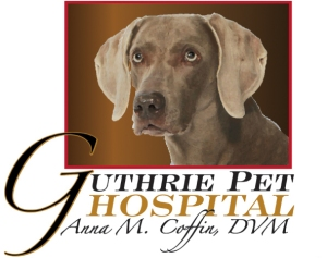 Anna Coffin is the Veterinarian at Guthrie Pet Hospital and can be contacted at (405) 282-8796.