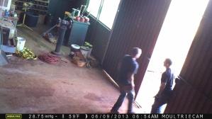 Crime 06112013